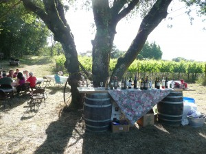 Wine & drink table for Midsummer's celebration